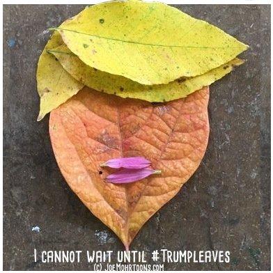 trumpleaves